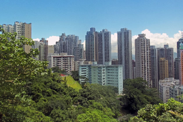 Flats in Hong Kong's Mid-Levels